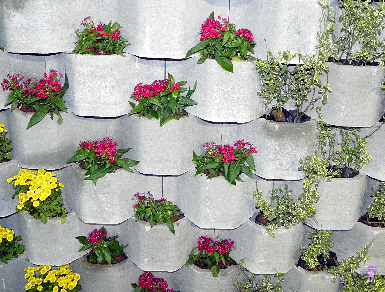Jardim Vertical  Inspirações e Dicas de Como Montar o Seu