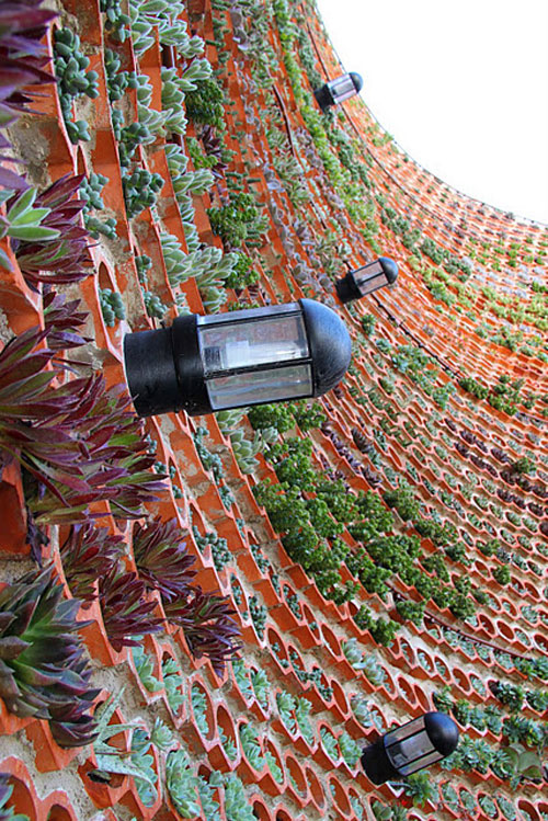 jardim vertical latas : jardim vertical latas:Jardim Vertical – Inspirações e Dicas de Como Montar o Seu